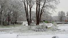 April: Voor het eerst in mijn leven Sneeuw op 26 april.