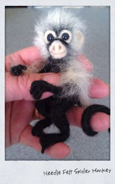 Needle felt spider monkey