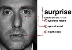 Surprise - Tim Roth