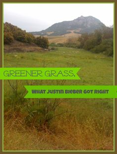 Greener Grass, What Justin Bieber Got Right! Mother Of Knights