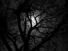 Confessions of a cancer patient. Daily diary of a woman diagnosed with a rare cancer. Gothic Bands, Lit Wallpaper, Iphone Wallpaper, Film Icon, High Fantasy, Dark Night, Photo Art, Moon, Day