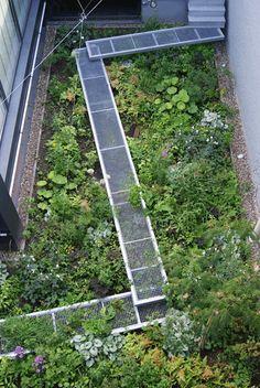 Le jardin de Luc à Anvers en Belgique