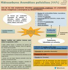 Hidrocarburos Aromáticos Policíclicos (HAPs) Cómo influyen en los #alimentos