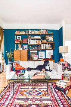 Blue wall.  Carpet.  Book shelves.