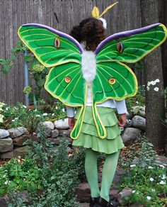 Luna Moth Costume (no sew)  http://kids.baristanet.com/2010/10/ask-holly/