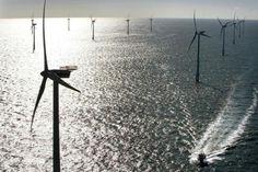 Eolico offshore, costituto esecutivo associazioni di Capitanata - http://blog.rodigarganico.info/2013/ambiente/eolico-offshore-costituto-esecutivo-associazioni-di-capitanata/