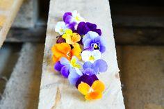 Viola flower / Sarviorvokki Edible flower / Syötävä kukka Edible Flowers, Plants, Plant, Planets