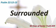 Surrounded (40 Days of Easter Truth #29)  Easter Focus Passage: Psalm 22:12-13   Easter Truth – DAY TWENTY-NINE:  Psalm 22 is yet another Old Testament prophecy that is fulfilled in the New Testament when Jesus went to the cross. David, in these two verses, complains about his enemies. The strength and the tenacity of their will causes him to fear what they could do to him.    KEEP READING: http://daniellawhyte.com/surrounded-40-days-of-easter-truth-29/