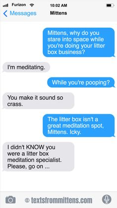 The Litter Box Meditation Edition Funny Cat Memes, Funny Texts, Text From Mittens, Cat Text, Litter Box, Text Messages, Knowing You, Humor, Phrases