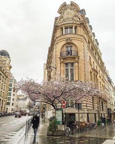 Hotels-live.com/pages/sejours-pas-chers - TOP Paris by @crissilveira #topparisphoto Allez sur la galerie à la une pour partager les likes !! Look at the featured gallery to share the LVE #communityfirst Hotels-live.com via https://www.instagram.com/p/BEFtTZOMAAc/