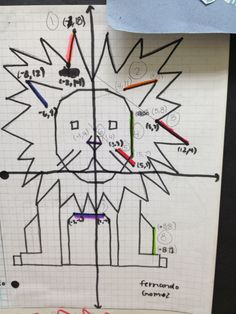 Animal Project - Graphing Linear Lines and Writing Linear Equations