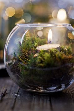 Tealight in a glass globe with greenery around it.