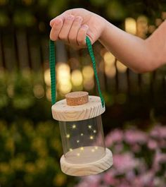 Easy-to-Use Vented Firefly Lantern make this?