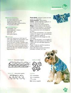 Crochê Especial roupinhas para cães