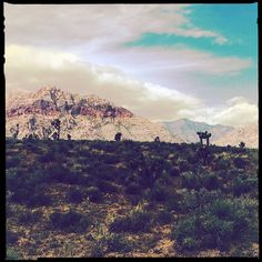 Best Smartphone, Grand Canyon, Nature, Travel, Naturaleza, Viajes, Destinations, Grand Canyon National Park, Traveling