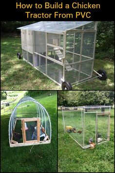 Chicken Tractor Plans 550705860682701652 - Start Raising Chickens by Building a Lightweight and Low-Maintenance PVC Chicken Tractor! Cheap Chicken Coops, Diy Chicken Coop Plans, Portable Chicken Coop, Best Chicken Coop, Chicken Coop Designs, Backyard Chicken Coops, Building A Chicken Coop, Chickens Backyard, Urban Chickens