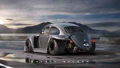 Old Volkswagen Beetle x Porsche 917k. I dunno, I just thought it would be cool.