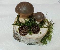 Birkenstamm Deko Tischdeko Natur Birke Pilz Holzscheibe Birke  in Möbel & Wohnen, Dekoration, Dekofiguren | eBay!