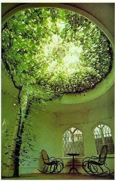 Beautiful green leave covered glas dome.