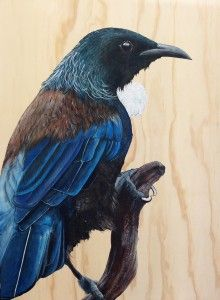 Joe's recent paintings depict a range of NZ Native birds painted directly onto beautiful natural woodgrain. His is also exploring the idea of cutout birds. Tui Bird, Bird Stencil, New Zealand Art, Nz Art, Halloween Pictures, Bird Drawings, Mural Painting, Nature Animals, Acrylic Art