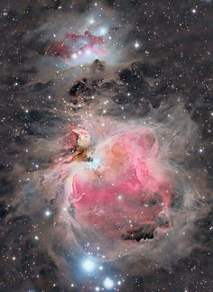 the Orion nebula. Imaged from Chiefland Star Party Group Field in Chiefland, Florida, photo by Steven Coates. This was imaged October 24 and is a reflection and emission nebula located around light years distant in the Orion constellation. Cosmos, Hubble Space Telescope, Space And Astronomy, Constellations, Orion Nebula, Helix Nebula, Carina Nebula, Andromeda Galaxy, Solar Nebula