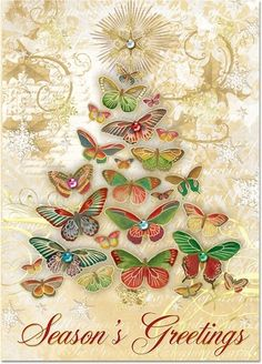 Punch Studio Butterfly Tree Boxed Cards
