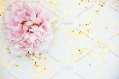 Soft Pink Peony and Gold Photo by Charmingly Savvy on @creativemarket