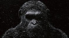 HD wallpaper: gorilla illustration, monkey, dark, Planet of the Apes, Dawn of the Planet of the Apes 4k Desktop Wallpapers, Wallpapers For Mobile Phones, Best Gaming Wallpapers, Dark Planet, Dawn Of The Planet, Planet Of The Apes, Full Hd Wallpaper Download, Battle Robots, Most Beautiful Wallpaper