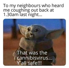 Yoda Meme, Yoda Funny, I Love To Laugh, Make Me Smile, Weed Humor, Cute Funny Animals, Laugh Out Loud, Funny Pictures, Funny Pics