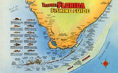 The tropical Florida fishing guide. | Florida Memory