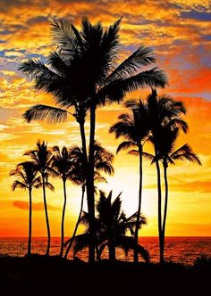Gorgeous Hawaii sunset