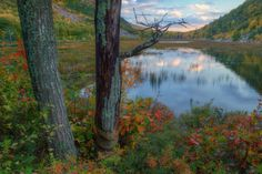 Autumn at The Tarn, Acadia National Park by Vincent James on 500px