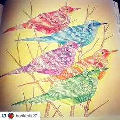 """Perfect!!!! By @booktalk27 #Repost @booktalk27 with @repostapp. ・・・ My birds…"