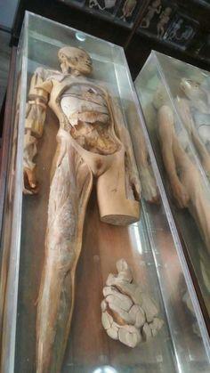 Estaban Explorando Tailandia Cuando Encontraron Este Museo. ~ Nueva Mentes