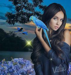 Blue Bird - Virginia Lucia Campos Mendonça