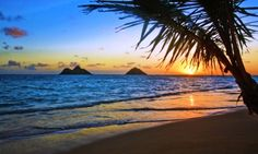 Pics For > Best Beaches In The World Sunset