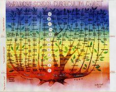 waldorf curriculum chart