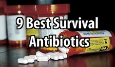 The 9 Best Survival Antibiotics. Antibiotics are often overlooked by preppers because preppers don't know which ones to buy or where to get them.