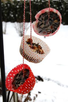 Birdie treats...keep cupcake liners and birdseed with string on hand.... make mini's as I have grease... no saving grease!