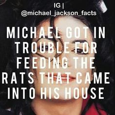 I have tried feeding rats long before i became a moonwalker. But it's either the rats left or mom caught me. :(