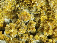 Cotunnite, PbCl2, La Fossa, volcanic island Eolie, Lipari, Messina, Sicily, Italy. Fov 3.6 mm. Collection: Domenico Preite. Copyright: Enrico Bonacina