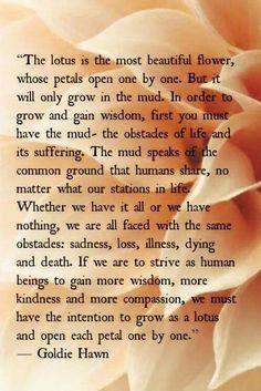 Pin by portia burton on my poems pinterest lotus and poem mightylinksfo