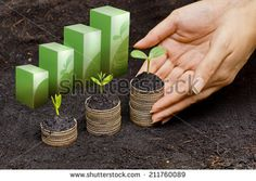 hands holding tress growing on coins in germination sequence / csr / sustainable development / business growth