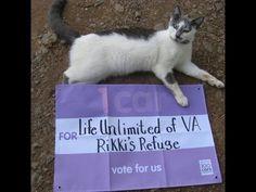 Toyota 100 Cars For Good, VOTE June 6 for  Rikki's Refuge (Life Unlimited of VA)