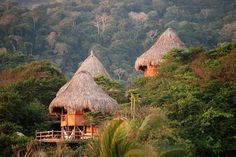 Ecohabs, an eco-lodge nestled in Tayrona National Park, Columbia Trip To Colombia, Colombia Travel, Vacation Places, Vacation Destinations, Vacation Ideas, Parc National, National Parks, Tayrona National Natural Park, The Places Youll Go