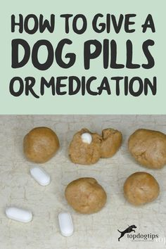 Whether it's antibiotics for an infection or medication to control a chronic condition, you need to know how to give a dog pills. How To Make Homemade, Homemade Dog, Whole Food Recipes, Dog Food Recipes, Foods Dogs Can Eat, Pill Pockets, Pocket Dog, Dog Health Tips, Canned Dog Food