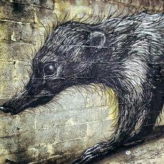 Streetart in Panama ...  roa_panama_mural_05 ... via http://www.whudat.de/streetart-roa-new-murals-in-panama-city-panama-7-pictures/
