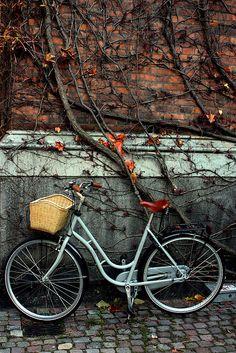 byke by Anastasia Tyavina, via Flickr