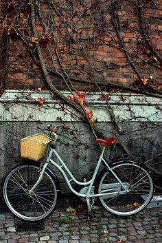 byke by Anastasia Tyavina, via Flickr