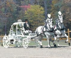 Cinderella Horse and Carriage